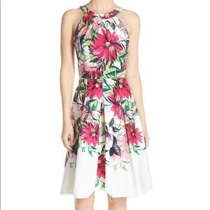 Eliza J Floral Print Tea Length Fit & Flare Dress
